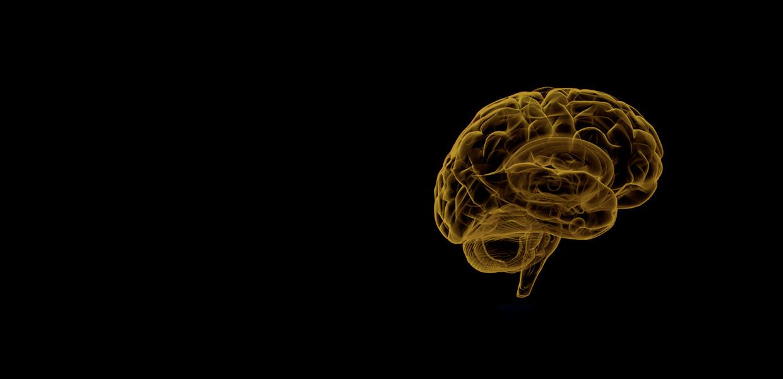 neurologia-mejive-majjul